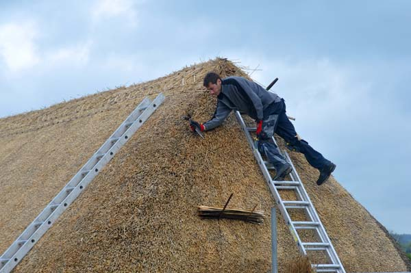 Completing the thatching job