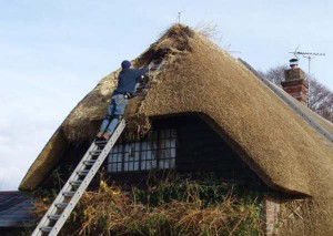 Thatching-finishing-off-014-400x284