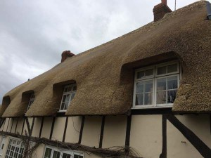 Total Re-thatch in Wheat Straw