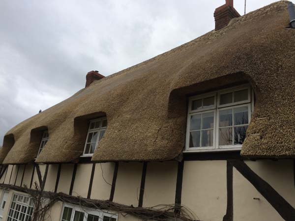 011 Total rethatch - Over Wallop - After (2)