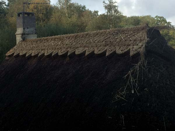 Harbridge - Block ridge - In Progress